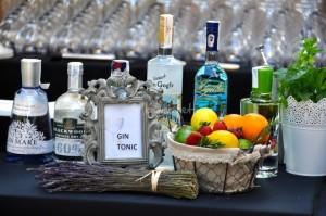 carrito-de-gin-tonic