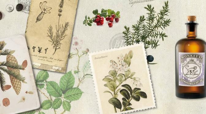 csm_collage_botanicals_web_5d84a54f8a