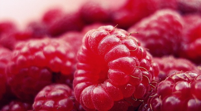 raspberry-427390_1280